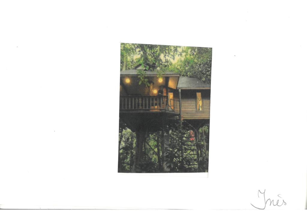 Prosopopée d'un chez soi : la cabane dans les bois d'Inès